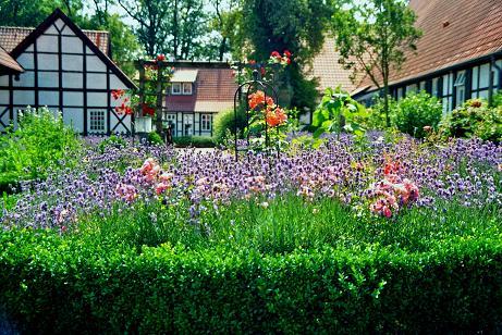 Jak urządzić swój ogród?