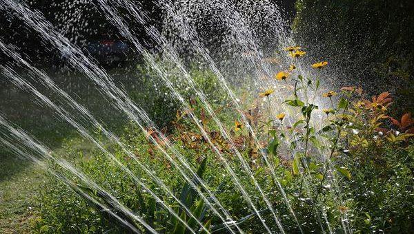 Nawadnianie ogrodów  jest bardzo ważne