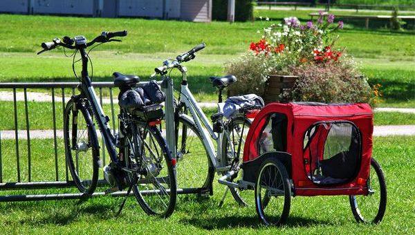 Przyczepki do roweru są wygodne dla dzieci